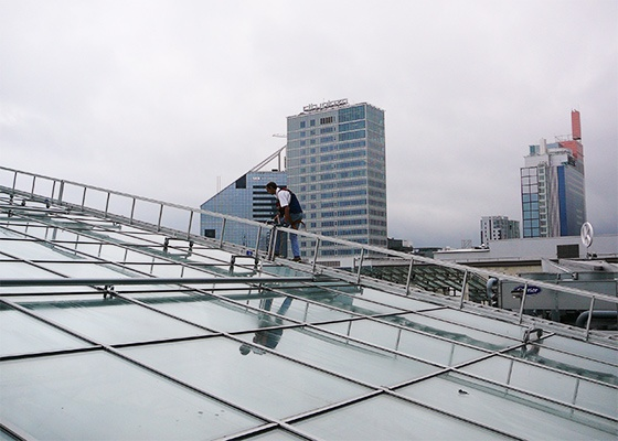 Traversing Ladders on a Glass Roof
